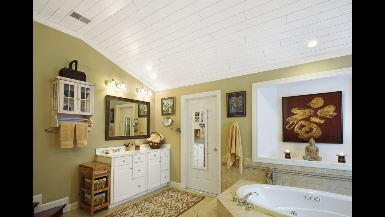 Bathroom Ceiling Lights Design Ideas | Mold Removal ...
