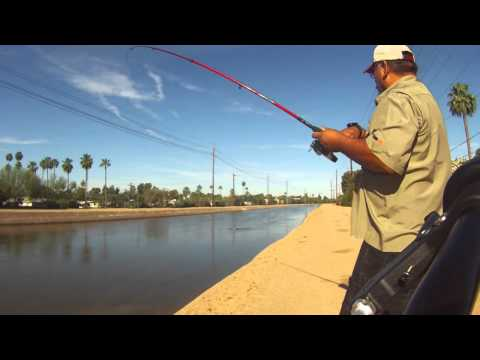 Spring Fishing on the Arizona Canal