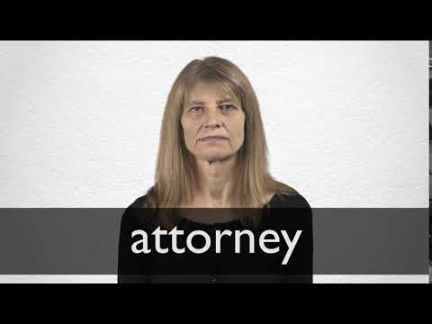 Attorney Synonyms | Collins English Thesaurus