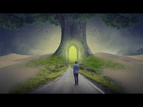 Big Tree Photo Manipulation | photoshop tutorial cc