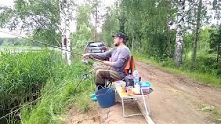 Ловля фідером на платнікє.Селище Квакшино,Тверська область.