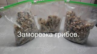 Хранение грибов / Как заморозить грибы на зиму