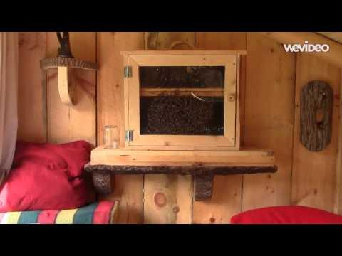 Hive House Video   Skandia, MI