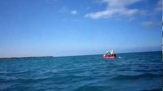 ハワイ島は、と〜っても海がきれい。 カヤック 海が身近に感じられて気...