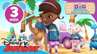 Doc McStuffins - Clip: Camille | Disney Junior