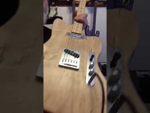 Storm-felled Willow Offset Tele