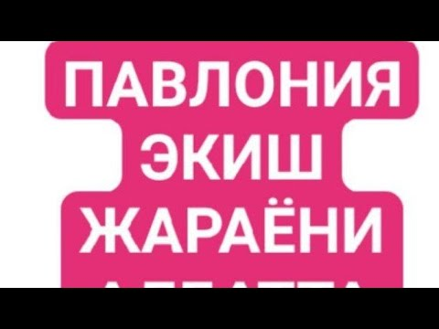 ПАВЛОНИЯ ЭКИШ ЖАРАЁНИ ОДДИЙ УСЛУБ. +998913280505