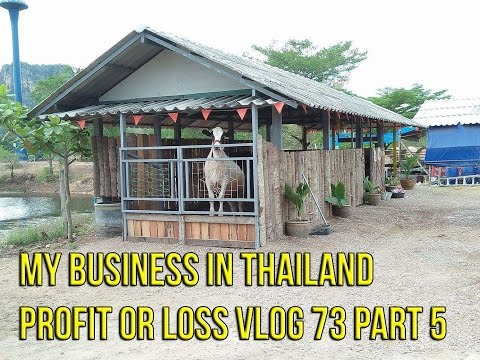My Business in Thailand profit or loss Vlog 73 Part 5