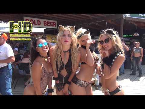 -Sturgis Motorcycle Rally- Amy Harwick @ 2:43 & 4:45 Drew Carey's Ex-fiancee