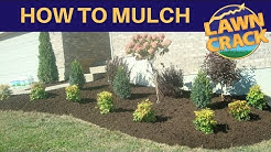 Mulch Like a Pro | How to Mulch Tutorial | How to Mulch and Edge | Landscaping Tips | LawnCrack
