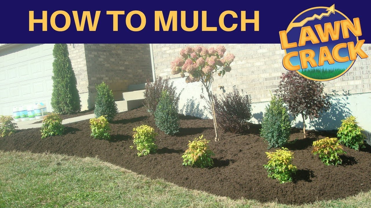 Mulch Like A Pro How To Mulch Tutorial How To Mulch And Edge