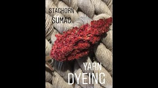 Natural yarn dyeing. Staghorn Sumac Yarn Dyeing