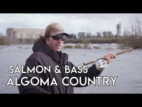 Salmon & Smallmouth Bass In Algoma | Sault Ste. Marie