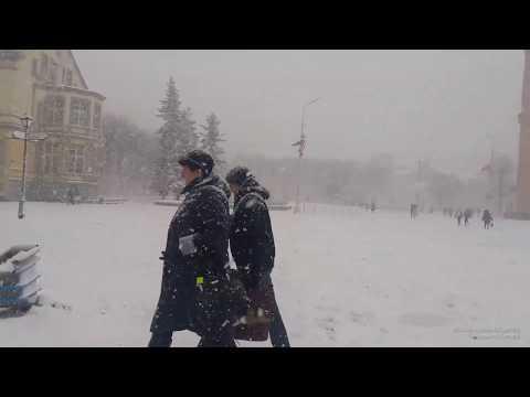 Советск 2019  Снегопад