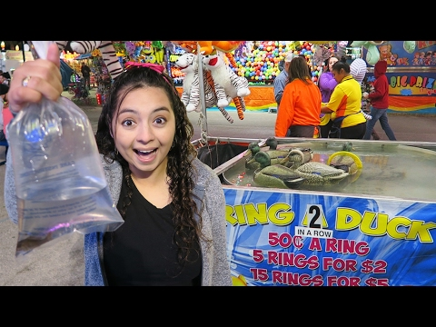 Florida State Fair Carnival Games!
