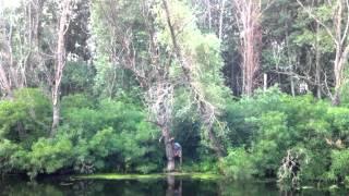 Заготівля дров на риболовлі