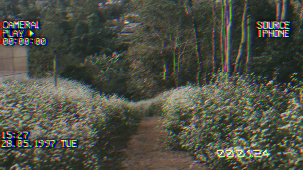 Download PAST  LIVES || Born _ SapientDream