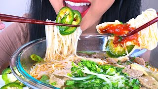 ASMR PHO *GIANT HOMEMADE BOWL OF NOODLE* | ASMR Phan