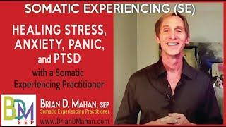 Healing Stress, Anxiety, Panic, PTSD with a Somatic Experiencing Practitioner