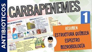 CARBAPENEMES, MONOBACTAMICOS, INFECCIÓN POR PSEUDOMONA AERUGINOSA,