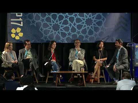 SOCAP17 - India & America: Exchanging Lessons in Impact Investing