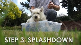 Puppy's First Bath Time! - Hattie The Westie