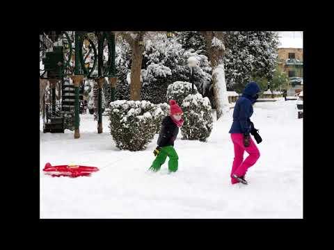 Escenas provocadas por la nevada en Soria