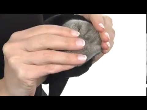 UGG Classic Leather Smart Glove SKU:#7978349