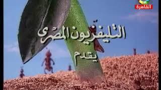 طارق فؤاد _ تتر قصص الأنبياء