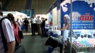 Богатые недра Актюбинской области