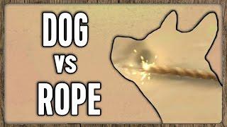 The Rope Breaks Dog [Hearthstone]