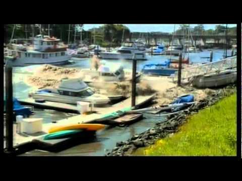 Tsunami Wrecks Marina in Santa Cruz California