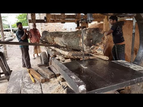 Tough! Cutting This Wood in Small Sawmill।Best Biggest Wood Cutting in Small Sawmill।Skilled Workers