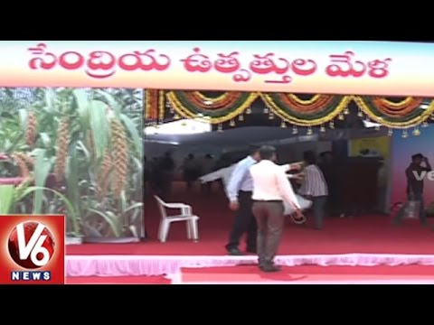 Organic Food Festival Held In People's Plaza | Hyderabad | V6 News
