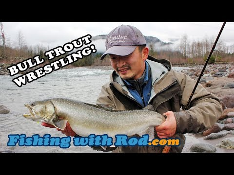 Wrestling Big Bull Trout!   Fishing With Rod