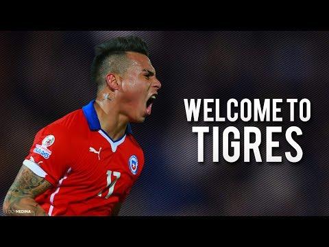 Eduardo Vargas ● Welcome To Tigres | Best Skills & Goals | 2016/17 | HD