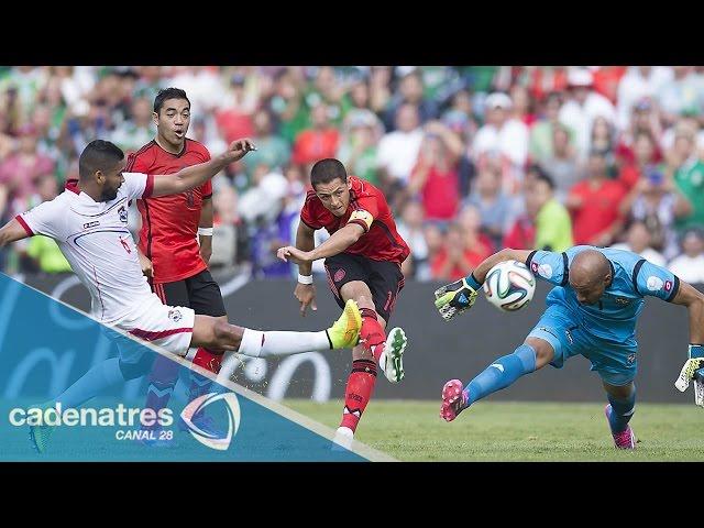 Los delanteros que conformarían la ofensiva del Tricolor para 2015