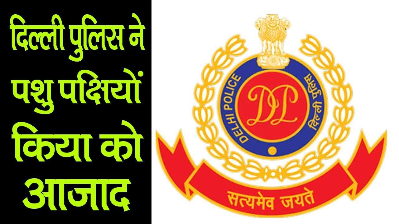 दिल्ली पुलिस ने पशु पक्षियों को किया आजाद | Corona breaking news | Delhi corona news | Mobilenews 24