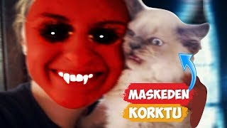 Maskeden Korkan Kediler! | [2018 Derleme] ● Eğlenceli Anlar