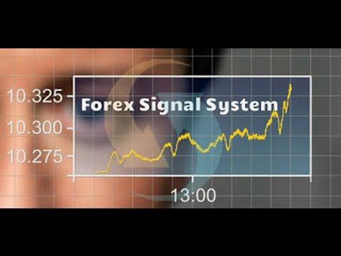 Best forex signal forum