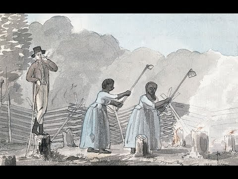 Chapter 4 Slavery, Freedom, and the Struggle for Empire