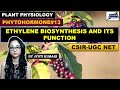 ETHYLENE BIOSYNTHESIS  AND FUNCTIONS | PHYTOHORMONES(PART-13)|CSIR NET| PLANT BIOLOGY