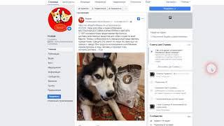 Пример созданной Фейсбук  страницы с нуля №1
