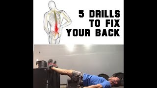 Low Back Pain? DO THIS | SmashweRx | Trevor Bachmeyer