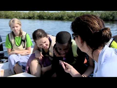 MarineLab Promo Video