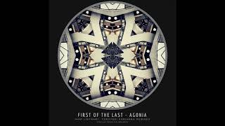 First Of The Last - Agonia image