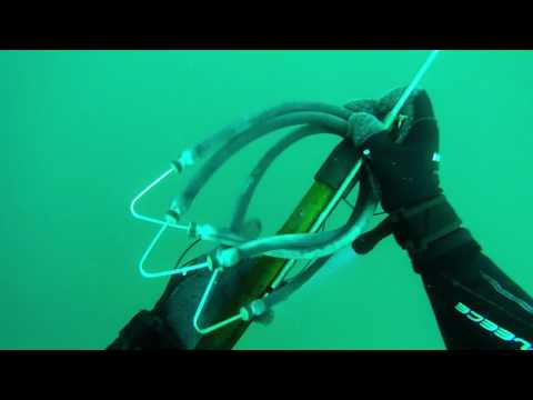 Deepwater Mafia beginner spearfishing misses