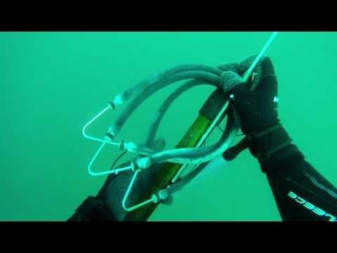 Deepwater Mafia beginner spearfishing misses