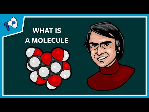 What Is a Molecule?