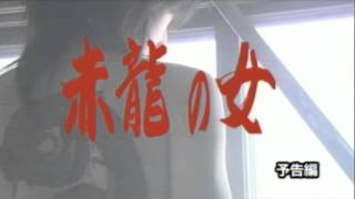 暴力団・黒澤会の組員ばかりを狙った連続殺人事件が発生。被害者はすべ...